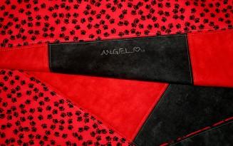 Angel IMG_2840