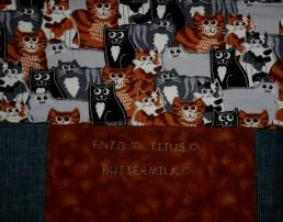 Enzo-Titus-Buttermilk Q IMG_3685