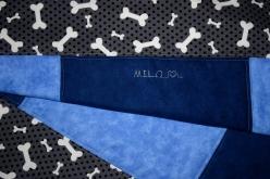 Milo Q IMG_3949